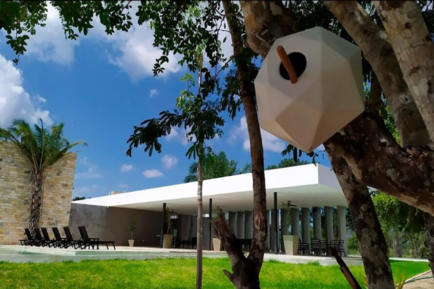 a white, geometric birdhouse in a tree with a green lawn and building in the background