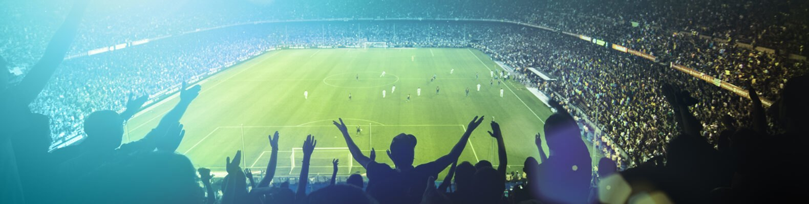fans cheering in a soccer stadium