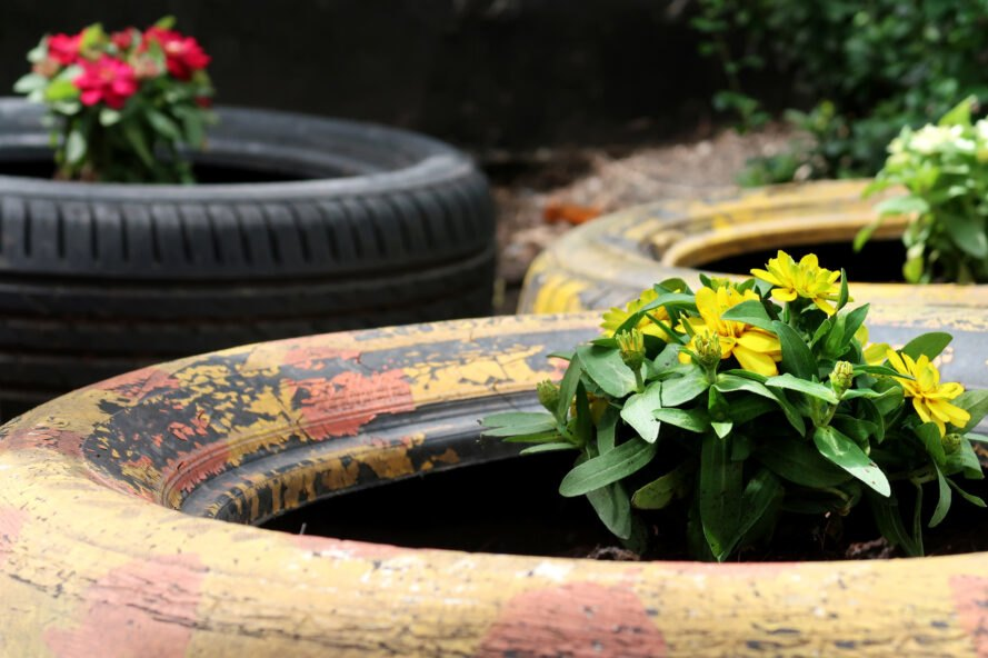 flowers growing in the center of old tires