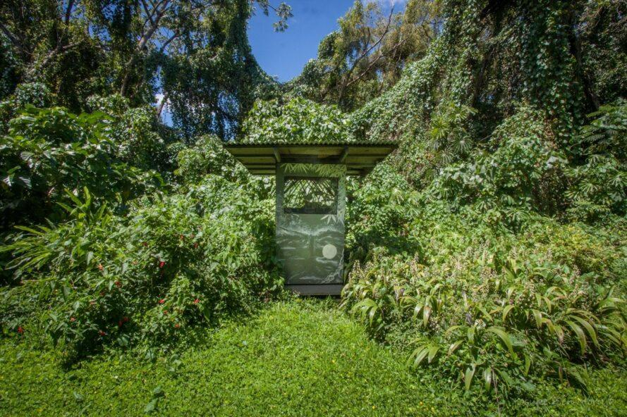 a small outhouse in a jungle landscape