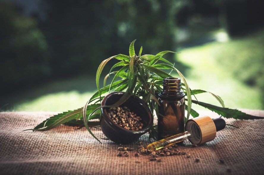 a dropper bottle next to a cannabis plant and seeds