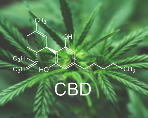 cannabis plant with the chemical composition of CBD overlayed