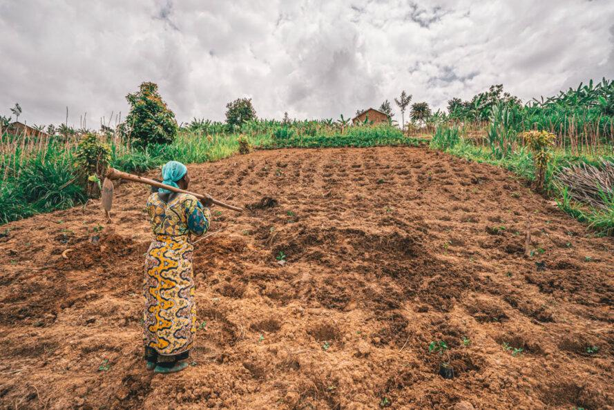 a person dressed in yellow with a tool slung over their shoulder looks out over a field of dirt for planting