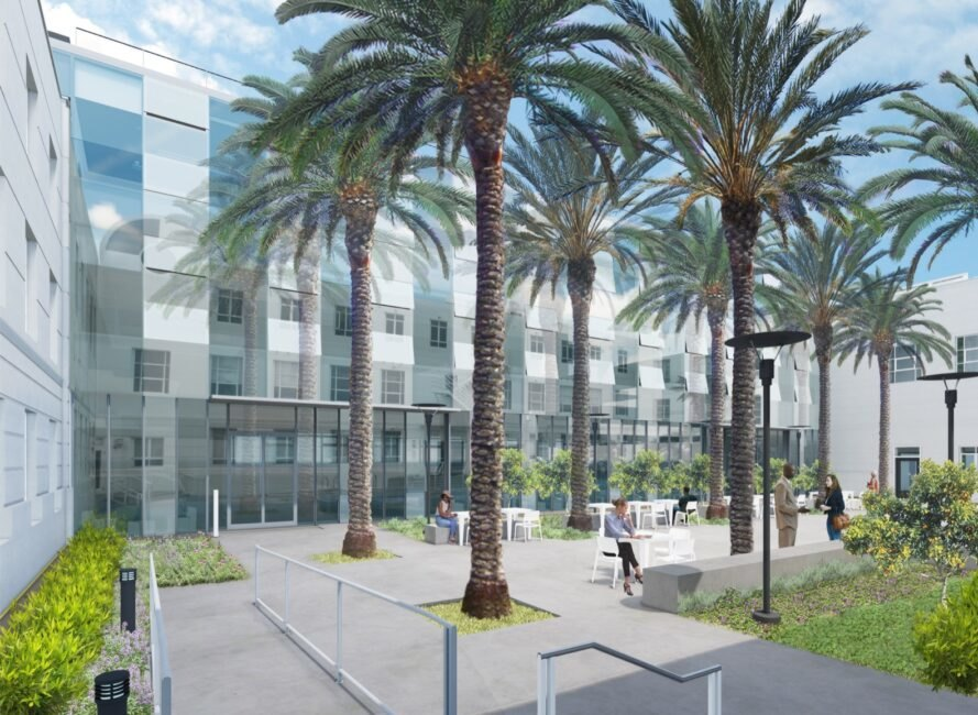 courtyard filled with palm trees between two buildings