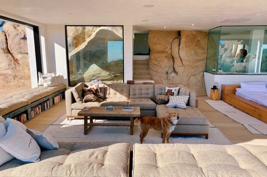 living space with two large sofas and a dog