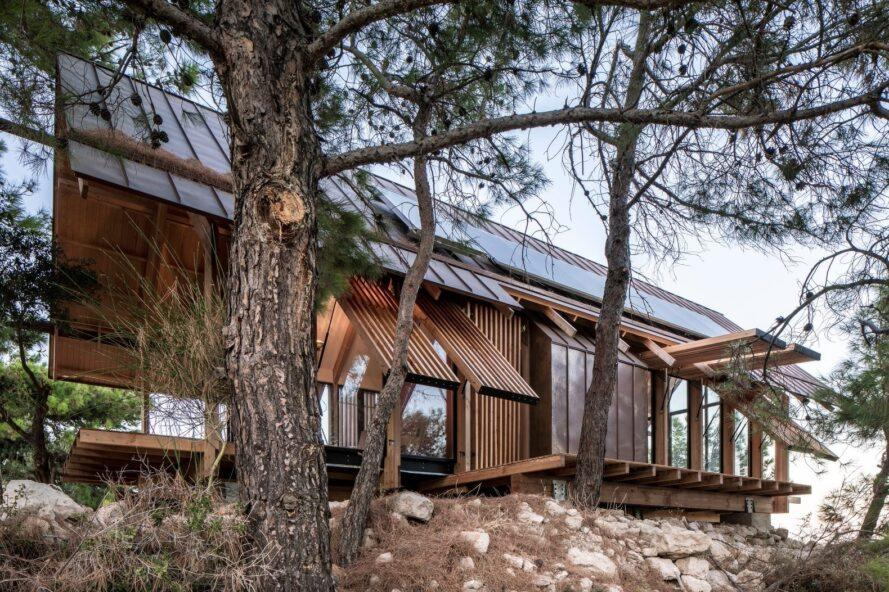 wooden home with pitched roof sitting among trees