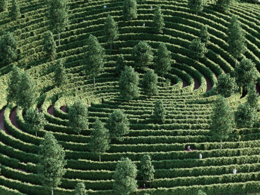 hedges in a park spiraling toward a center