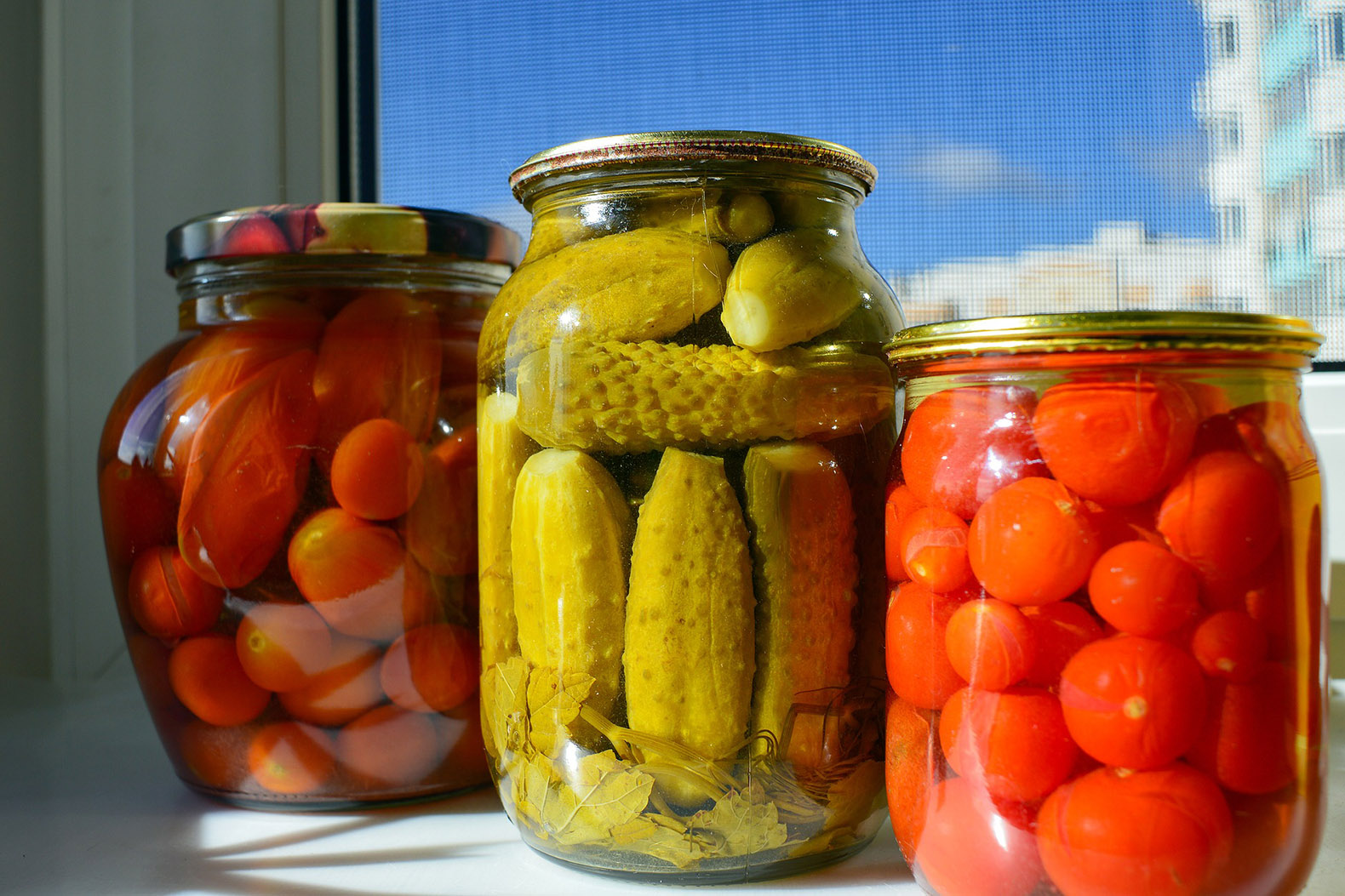 three cans of pickled tomatoes, cucumbers and radishes