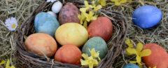 naturally dyed Easter eggs in a basket surrounded by flowers