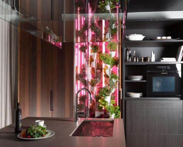 vertical garden with pink lights on a wood wall in a kitchen