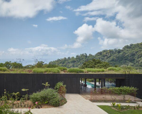 charred timber building with green roof