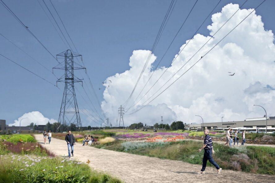 rendering of many plants surrounding a walking path underneath power lines