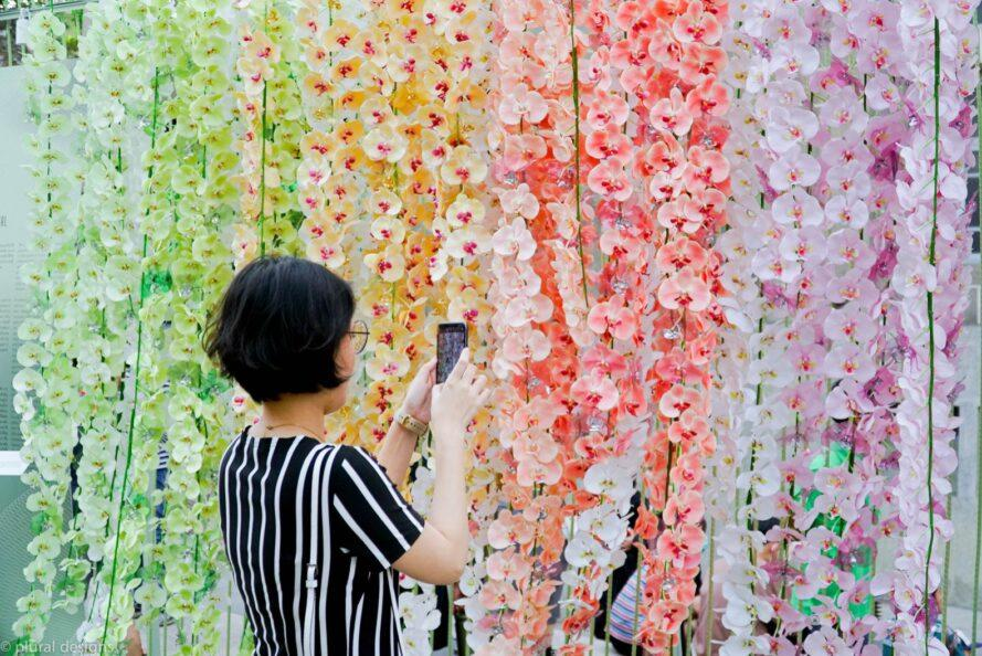 person taking photo of strings of colorful flowers