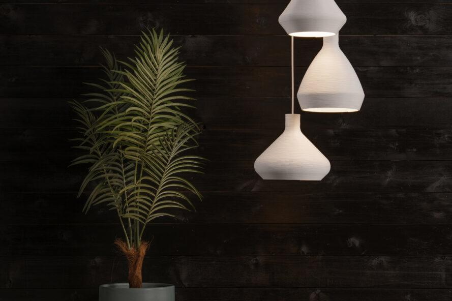 white pendant lights hanging beside a plant