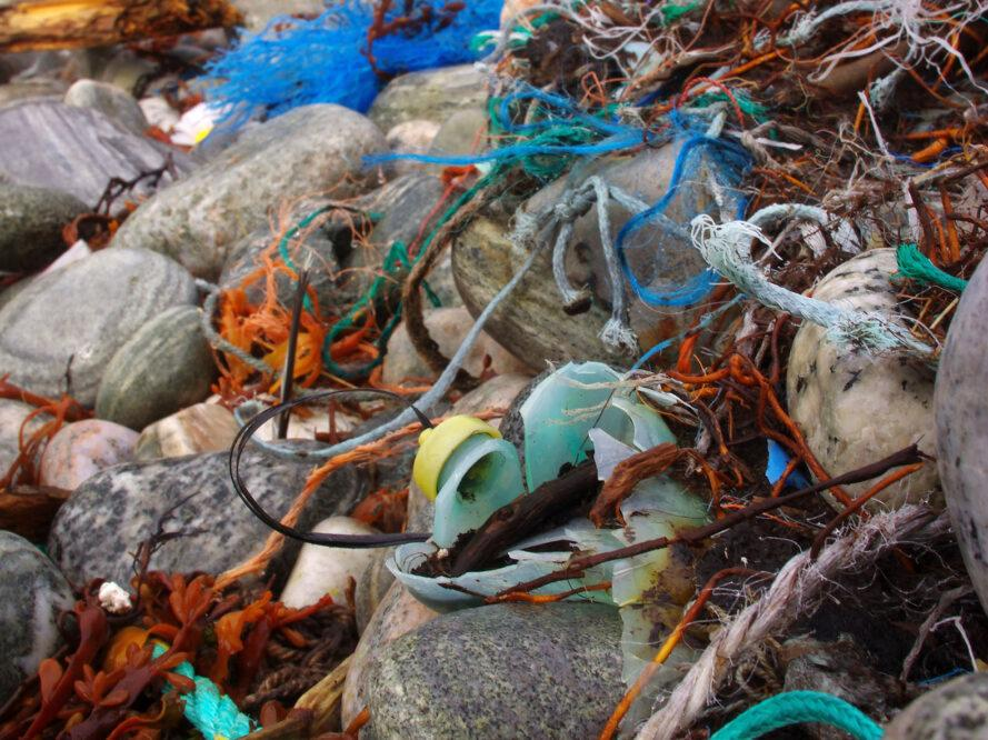 microplastics and other debris on the coast of the ocean