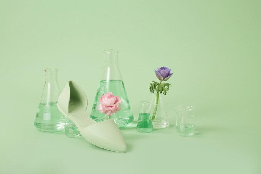 green flat shoe near vases of flowers