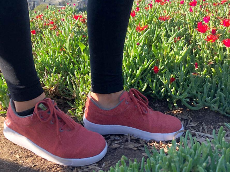 person wearing red hemp shoes and standing next to red flowers