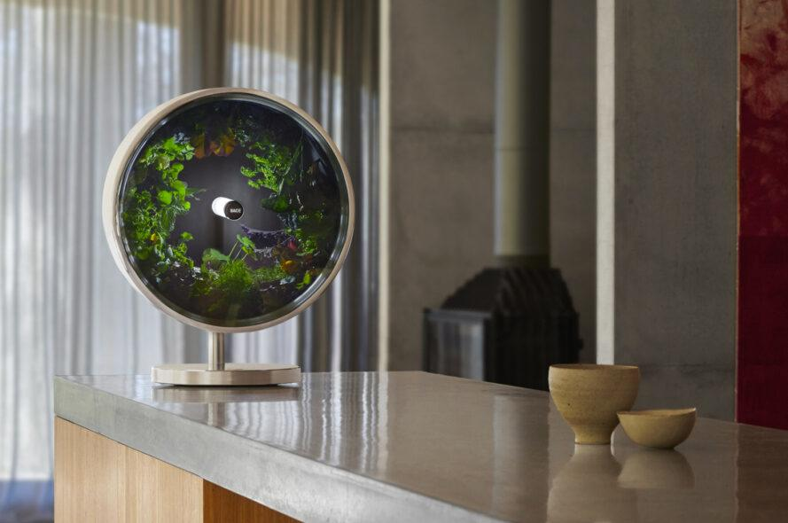 round indoor garden system on a gray counter