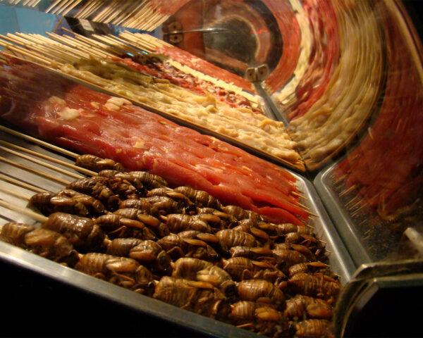 a food display with cicadas at the front and various other meats in the background