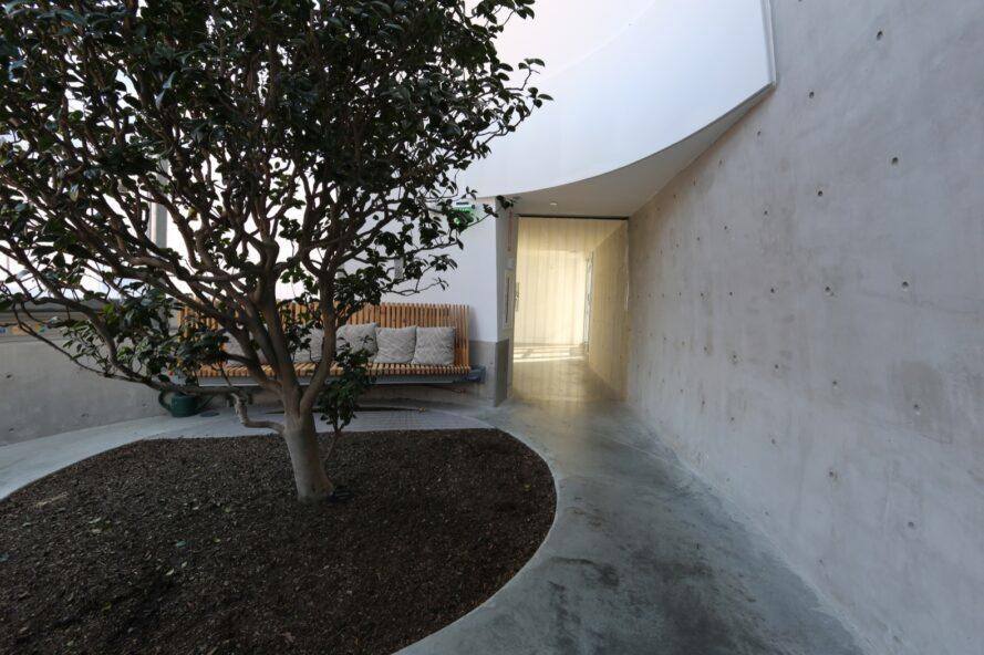 room with concrete walls, a wood bench and a tree growing in the center of the room