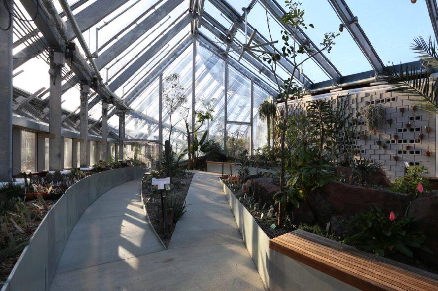 greenhouse with two sidewalks leading throughout the plants