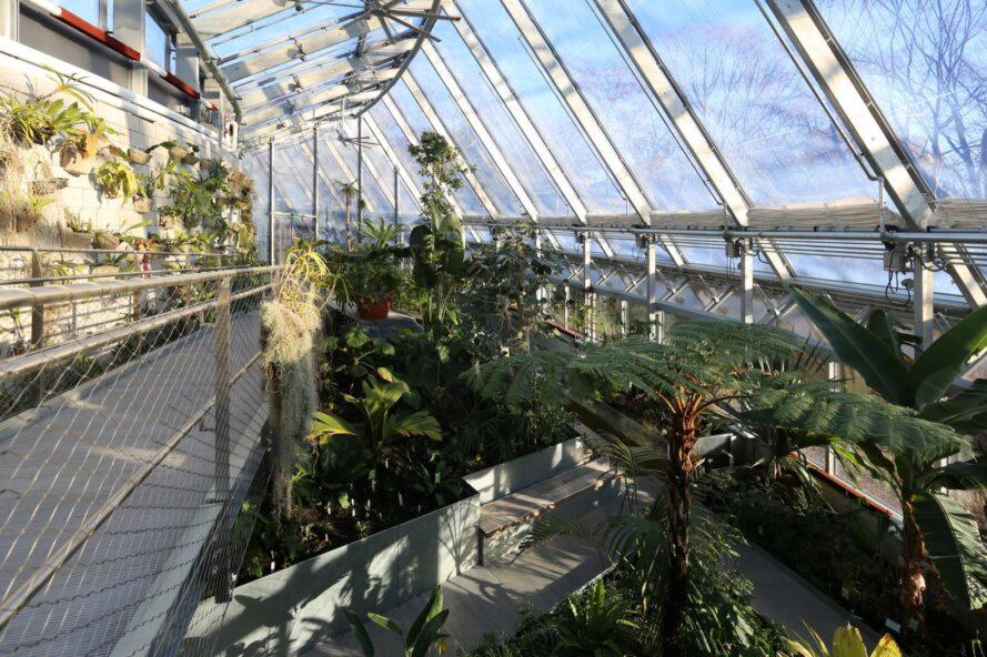greenhouse with multiple floors covered in plants