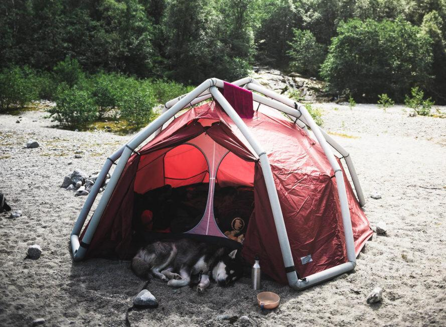 a red and white geodesic tent camped out near a forest, with a dog laying in front of the tent