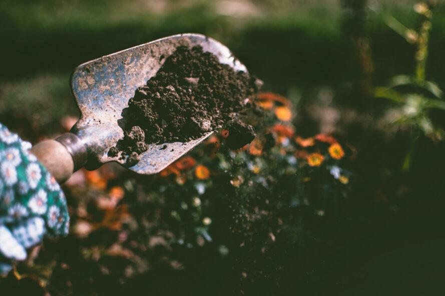 a hand-shovel in the dirt
