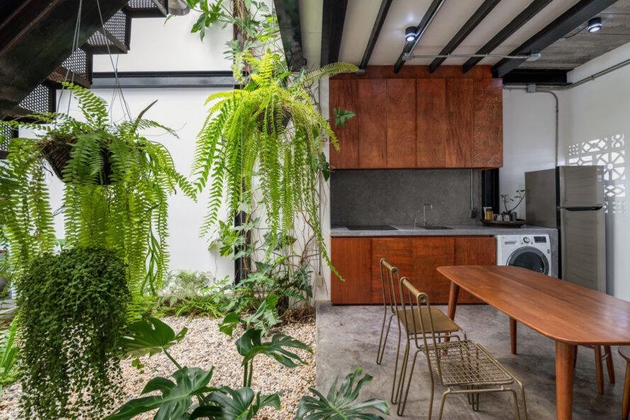 large hanging plants near a wooden dining table and kitchen with wooden cabinets