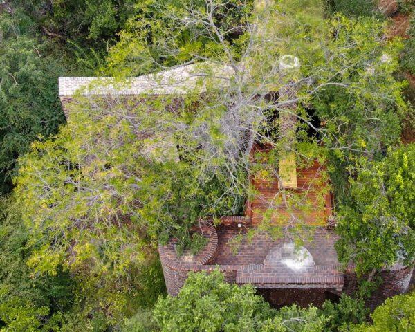 a bird's-eye view of green trees partially obscuring a brick and wood home