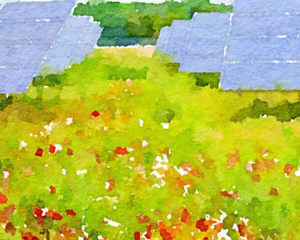 a painting of a green field with red flowers surrounding two rows of solar panels