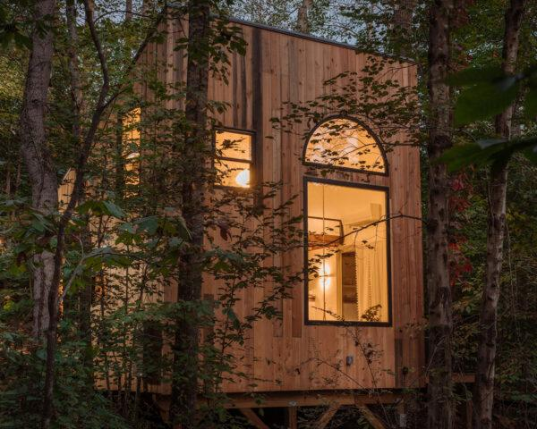 wood cabin with large windows in a forest