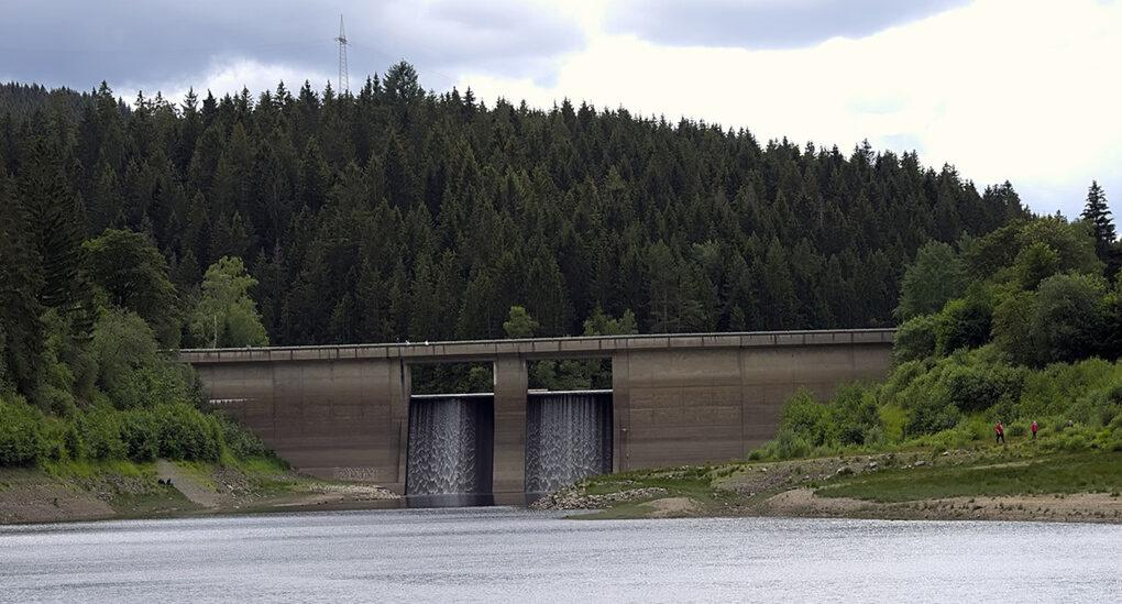 dam in an evergreen forest