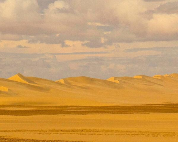 a yellow sand desert against the horizon