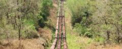 natural gas pipeline cutting through a forest