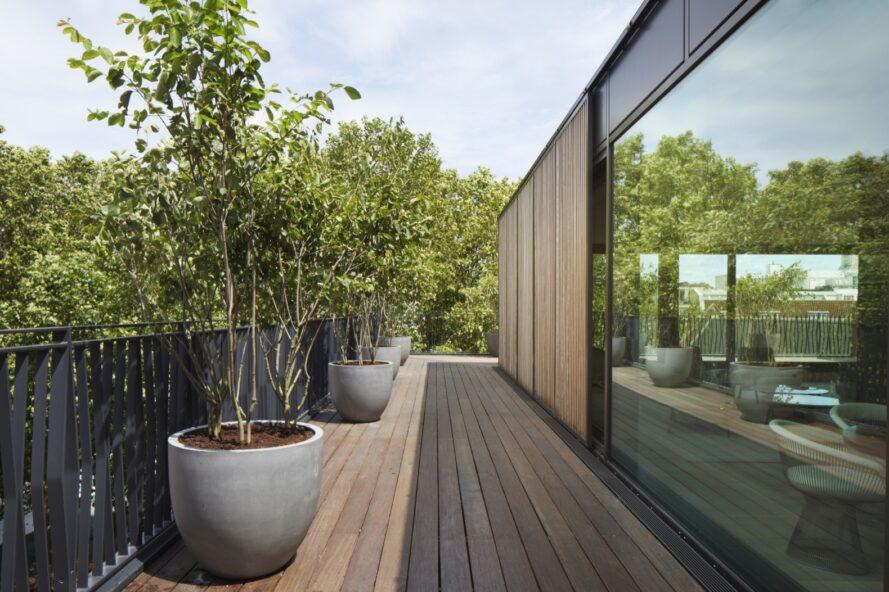 potted plants lining a wooden deck