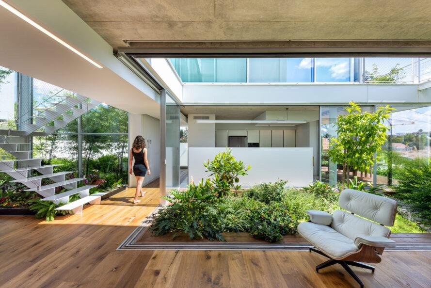 white interior with wood floors and central indoor garden