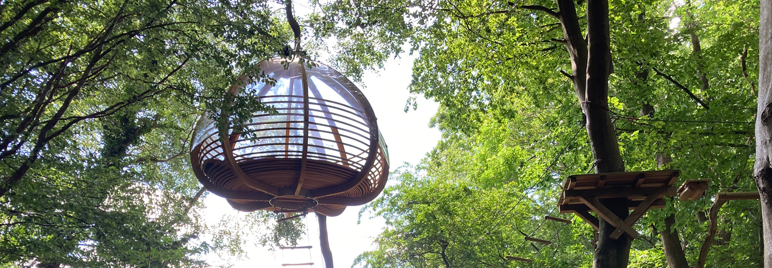 Spend the night among the trees in southern Denmark