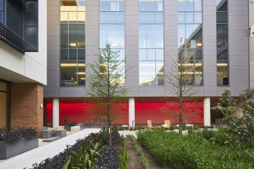 an outdoor courtyard full of greenery. a red exterior wall sits parallel to the green area.