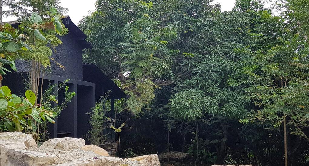 black gabled home surrounded by trees and a stone wall