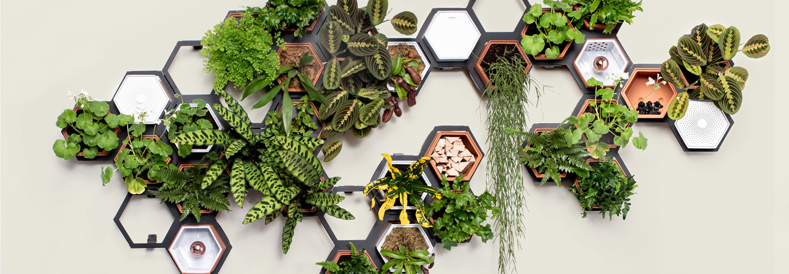 Plant a unique indoor garden with this modular living wall kit from Horticus