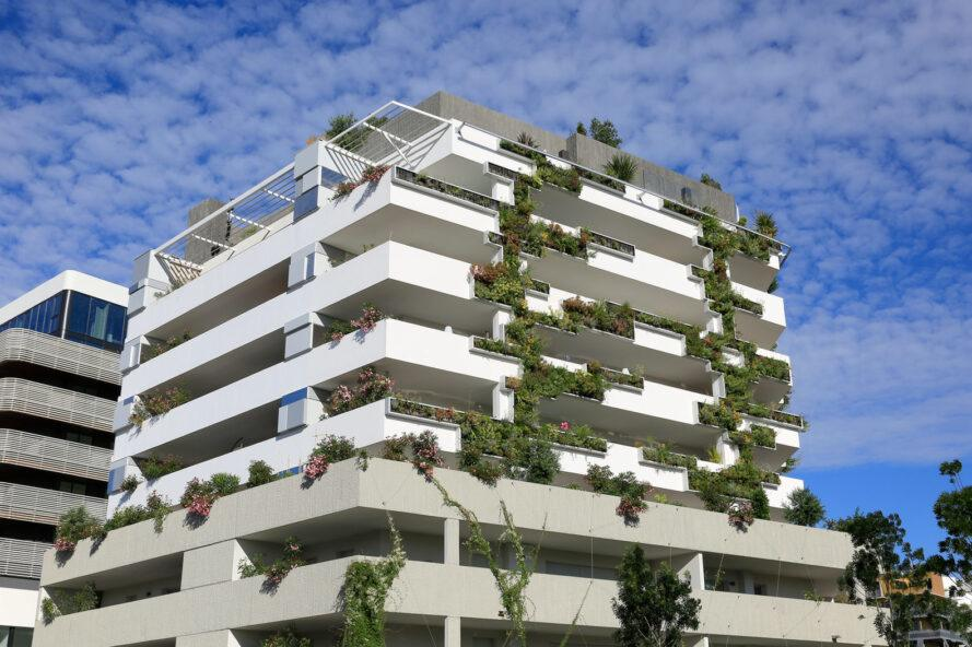 plants on a tall white building