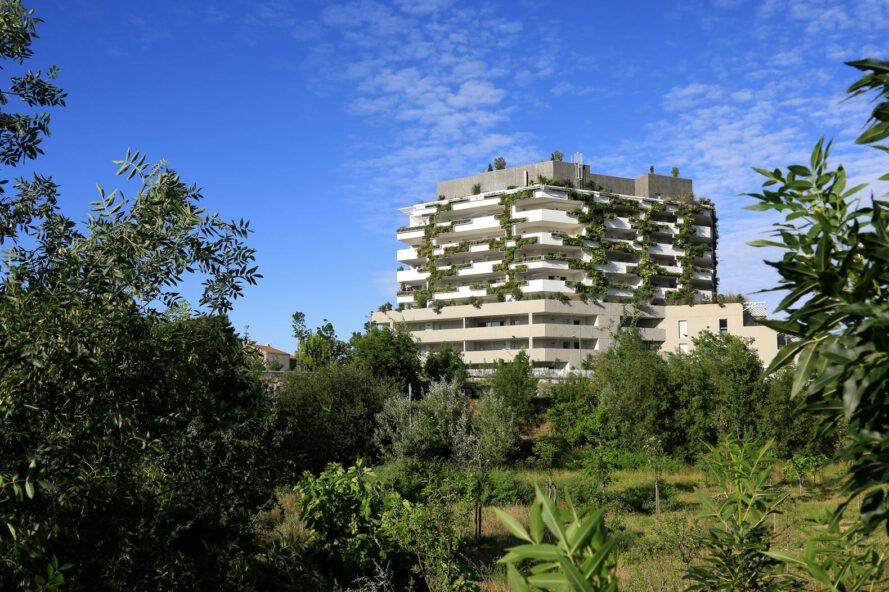 trees and green space surrounding plant-covered building