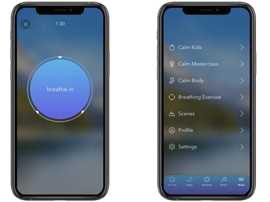 """Two images of a phone, showing the app """"Calm."""""""