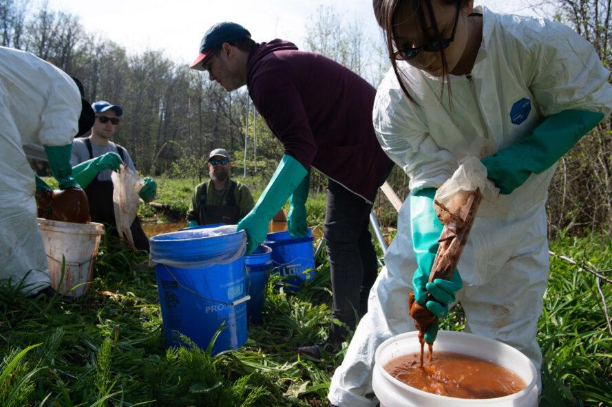 volunteers getting iron oxide out of stream water