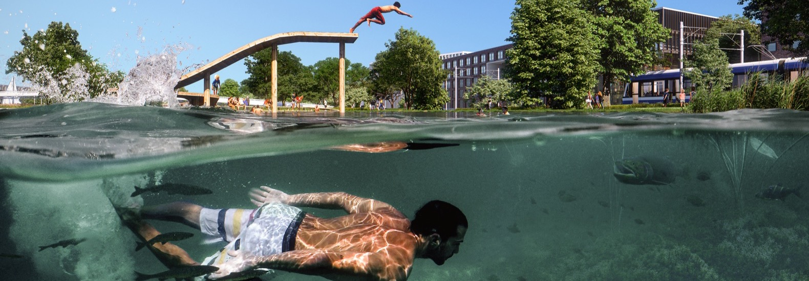 This city park in Amsterdam could help purify local water