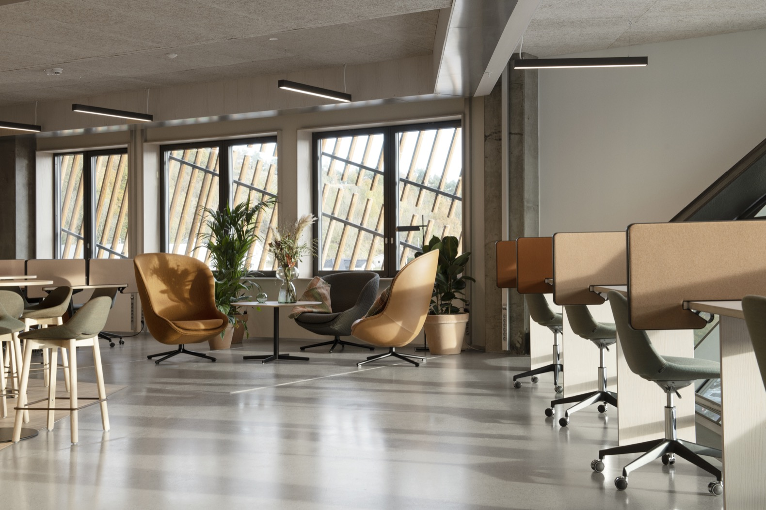 tan chairs in office space