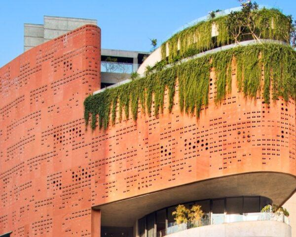creeping plants growing over perforated red clay building