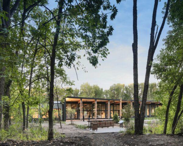 gray and light timber building surrounded by forest