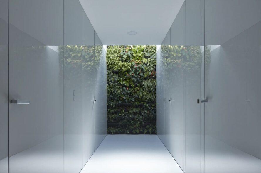 white hallway with a green wall at the end
